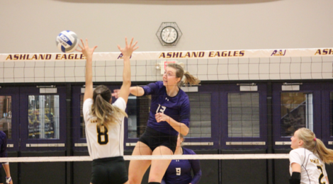 AU Volleyball continues home winning streak