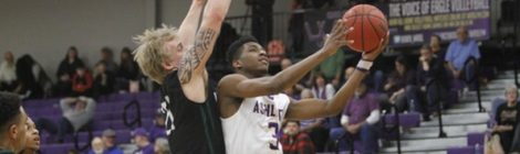 AU Men's Basketball crushes Tomcats