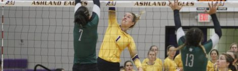 AU Volleyball downs Tiffin 3-0
